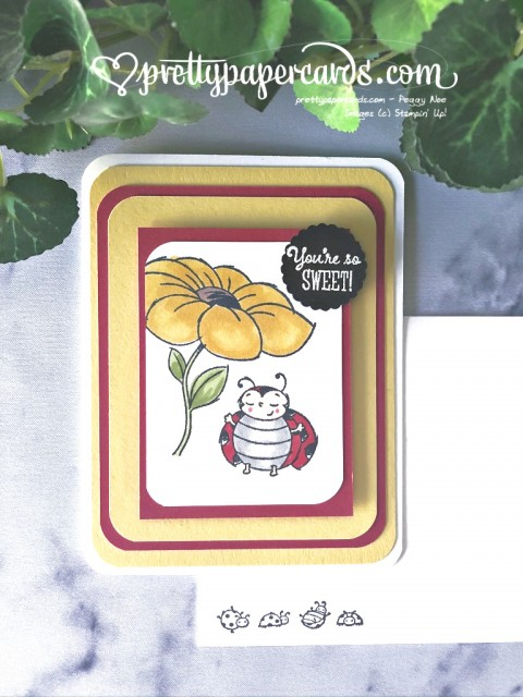 Little Ladybug Sweet Card Stampin' Up! by Peggy Noe (1)