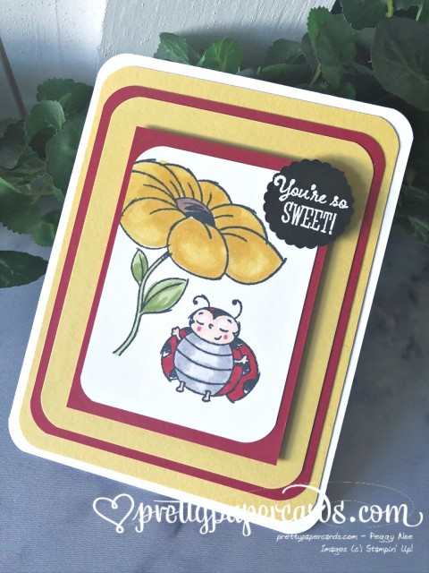 Sweet Ladybug Card Stampin' Up! by Peggy Noe