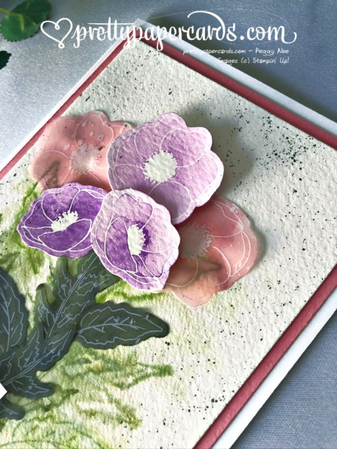 Stampin' Up! Watercolored Poppies by Peggy Noe