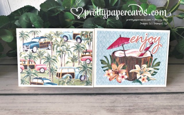 Tropical Oasis Booklet Stampin' Up! by Peggy Noe
