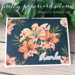Tropical Oasis Stampin
