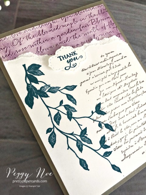 Versailles Thank You Stampin' Up! Peggy Noe