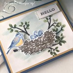 Birds&Branches RD Stampin