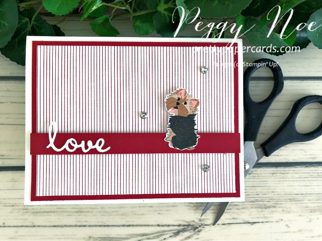 Playful Pets Card Stampin' Up! Peggy Noe