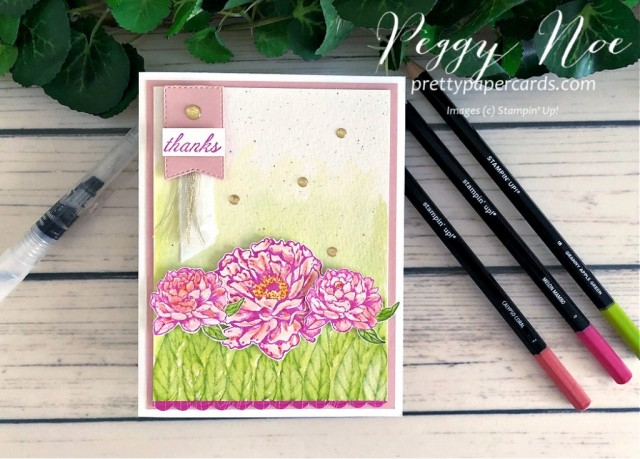 Peony Thanks Stampin' Up! Peggy Noe