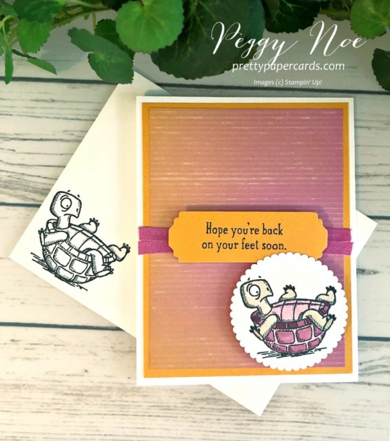 #getwellcard #backonyourfeet #stampinup #stampingup #peggynoe #prettypapercards