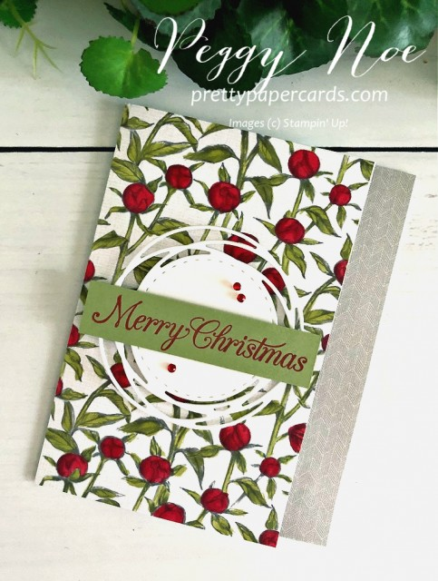 #peggynoe #prettypapercards #peonygarden #poinsettiapetals #stampinup #stampingup #christmas #christmascard #holidaycard