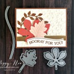 Quite Curvy Bundle by Stampin