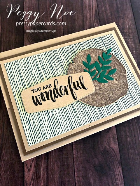 "Handmade ""You are Wonderful' card using the Stampin' Up! Rooted in Nature stamp set, designed by Peggy Noe of prettypapercards.com #rootedinnature #guycard #giftcardholder"