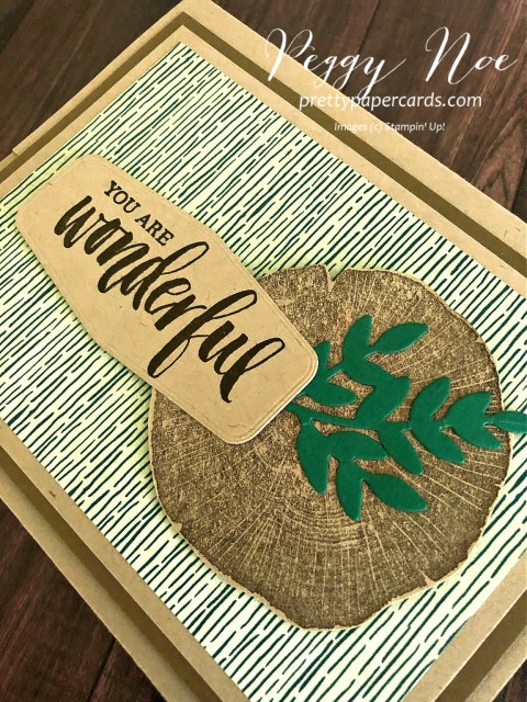 "Handmade ""You are Wonderful' card using Stampin' Up! Rooted in Nature stamp set, designed by Peggy Noe, prettypapercards.com #rootedinnature #guycard #giftcardholder"