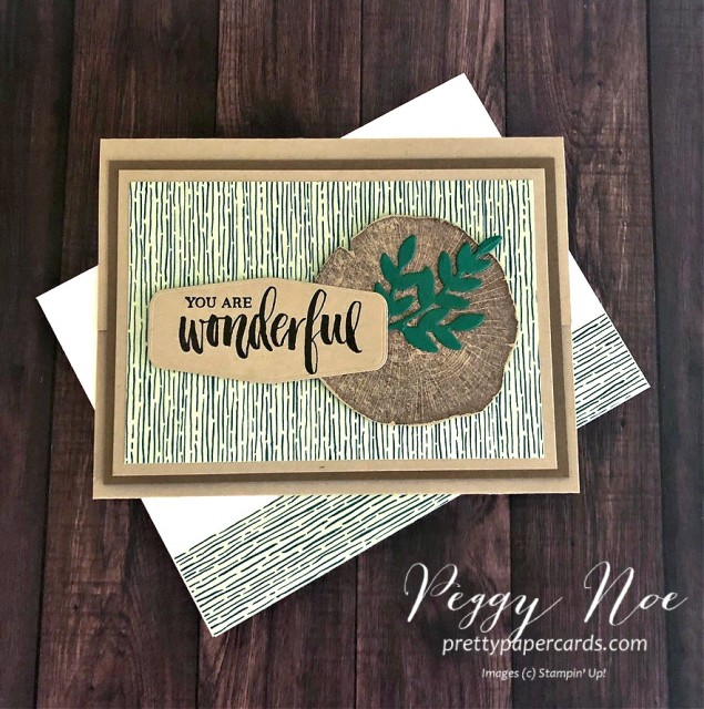 "Handmade ""You are Wonderful' card using the Stampin' Up! Rooted in Nature stamp set, designed by Peggy Noe of prettypapercards.com"