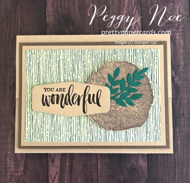"Handmade ""You are Wonderful' card uses Stampin' Up! Rooted in Nature stamp set, designed by Peggy Noe, prettypapercards.com #rootedinnature #guycard #giftcardholder"