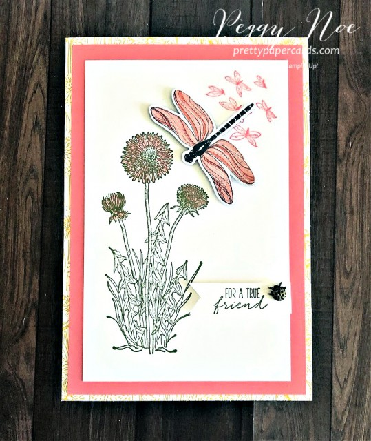 Dandy Garden Suite by Stampin' Up! Friend Card designed by Peggy Noe of prettypapercards.com #dandygarden #dragonfly #stampinup #friendcard