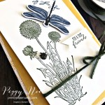 Dandy Garden Suite by Stampin