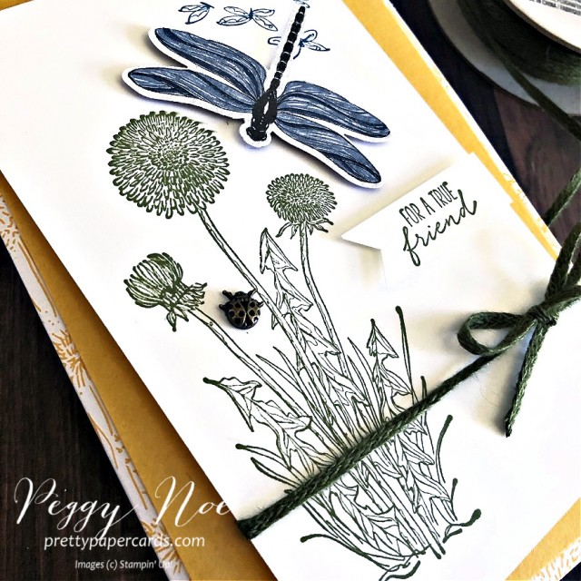 Dandy Garden Suite by Stampin' Up! Friend Card designed by Peggy Noe of prettypapercards.com #dandygarden #stampinup #friendcard