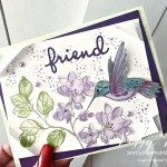 Handmade card with a Hummingbird from the A Touch of Ink Stamp Set by Stampin