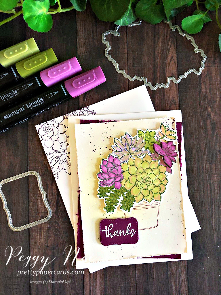 Handmade thank you card made with the Stampin' Up! Simply Succulents stamp set; designed by Peggy Noe of prettypapercards.com #simplysucculents #stampinup #thankyoucard