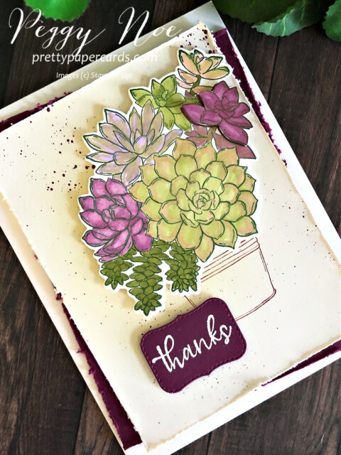 Handmade thank you card made with the Stampin' Up! Simply Succulents stamp set; designed by Peggy Noe of prettypapercards.com #simplysucculents #thankyoucard