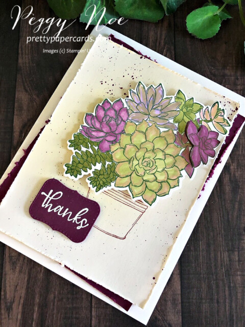 Handmade thank you card made with the Stampin' Up! Simply Succulents stamp set; designed by Peggy Noe of prettypapercards.com #simplysucculents #handmade #stampinup #prettypapercards #thankyoucard