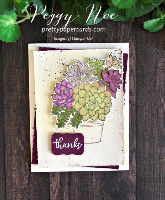 Handmade thank you card made with the Stampin' Up! Simply Succulents stamp set; designed by Peggy Noe of prettypapercards.com #simplysucculents #stampinup #prettypapercards #thankyou