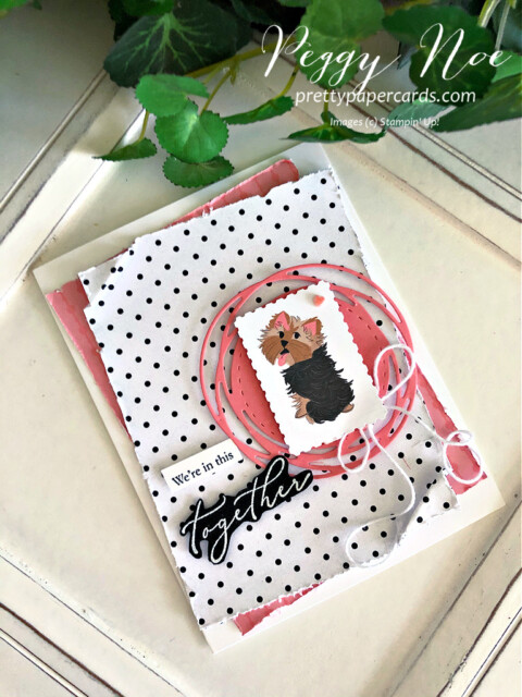 Handmade card using the Heal Your Heart stamp set and the Playful Pets paper from Stampin' Up! created by Peggy Noe of prettypapercards.com #playfulpets #healyourheart #peggynoe #prettypapercards.com