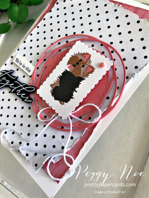 Handmade card using the Heal Your Heart stamp set and the Playful Pets paper from Stampin' Up! created by Peggy Noe of prettypapercards.com #playfulpets #healyourheart #yorkshireterrier #peggynoe #prettypapercards.com