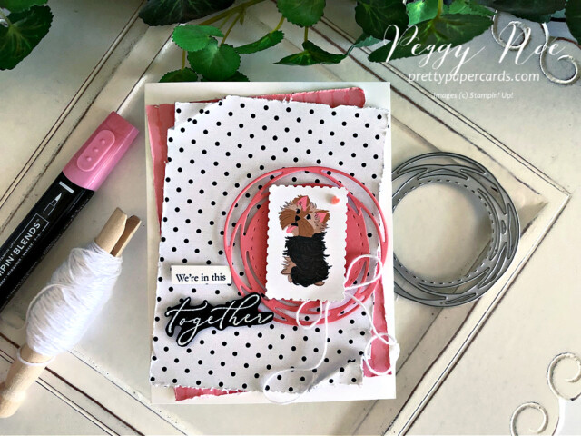 Handmade card using the Heal Your Heart stamp set and the Playful Pets paper from Stampin' Up! created by Peggy Noe of prettypapercards.com #playfulpets #healyourheart #peggynoe #prettypapercards