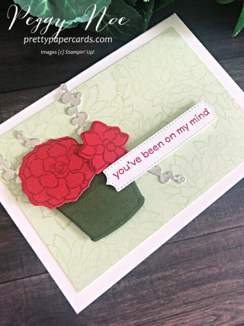Handmade notecard using the Simply Succulents Bundle by Stampin' Up! designed by Peggy Noe of prettypapercards.com #simplysucculents #simplysucculentsbundle #stampinup #peggynoe #prettypapercards