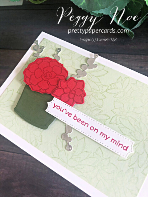 Handmade notecard using the Simply Succulents Bundle Stampin' Up! designed Peggy Noe of prettypapercards.com #simplysucculents #simplysucculentsbundle #stampinup #peggynoe #prettypapercards