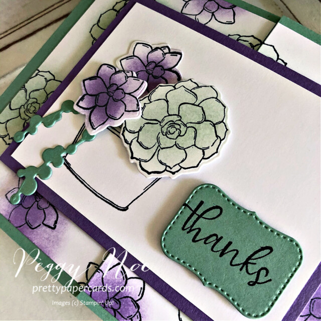 Handmade Thank You Gatefold Card using the Simply Succulents Stamp Set by Stampin' Up! and made by Peggy Noe of  Pretty Paper Cards #peggynoe #prettypapercards #prettypapercards.com #simplysucculents #simplysucculentsstampset #gatefoldcard #gatefold #thankscard #thankyou #stampingup