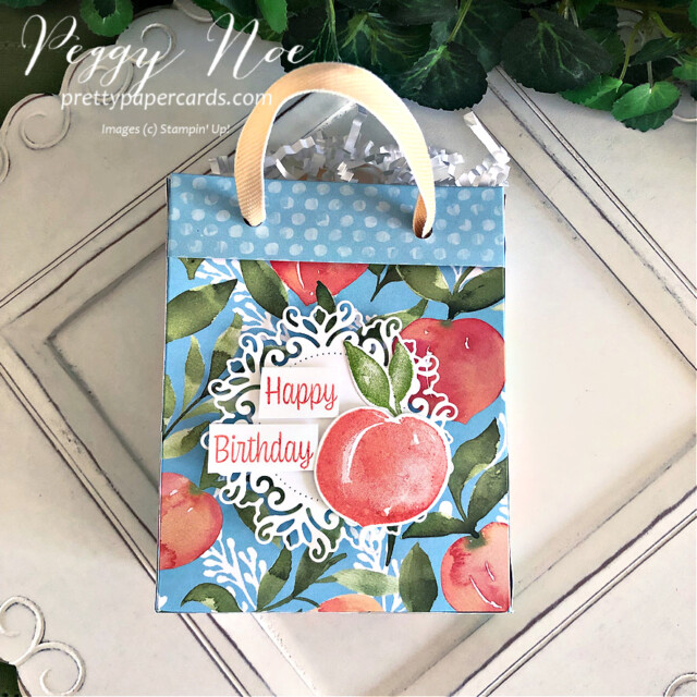 Handmade Happy Birthday Gift Bag made with Stampin' Up! You're a Peach Paper created by Peggy Noe of Pretty Paper Cards #peggynoe #prettypapercards #prettypapercards.com #giftbag #papergiftbag #handmadegiftbag #you'reapeach #you'reapeachdesignerseriespaper #you'reapeachdsp #encircledinbeautydies #sweetasapeachbundle #sweetasapeachstampset #minijamjars