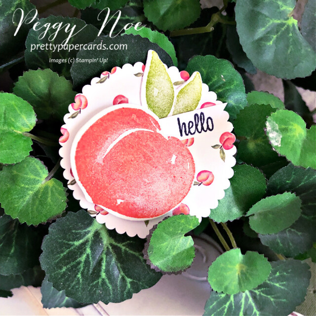 Handmade Circle Tags featuring the Sweet as a Peach Bundle by Stampin' Up! created by Peggy Noe of Pretty Paper Cards #handmadetag #circletag #circleornament #layeringcircledies #sweetasapeachbundle #sweetasapeach #you'reapeachdesignerseriespaper #you'reapeachdsp #stampinup #stampingup #peggynoe #prettypapercards