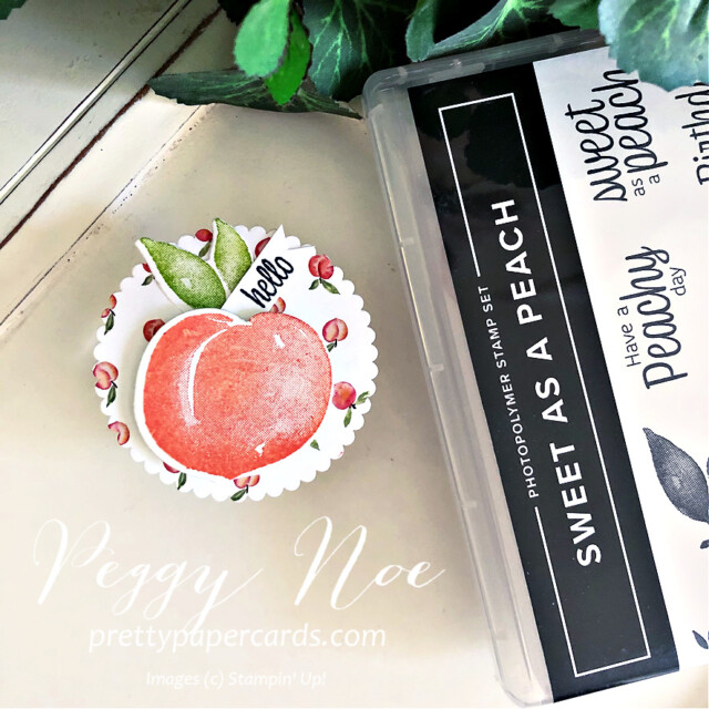 Handmade Circle Tags featuring the Sweet as a Peach Bundle by Stampin' Up! created by Peggy Noe of Pretty Paper Cards #handmadetag #circletag #circleornament #layeringcircledies #sweetasapeachbundle #sweetasapeach #you'reapeachdesignerseriespaper #you'reapeachdsp #stampinup #stampingup #peggynoe #prettypapercards #peachtag