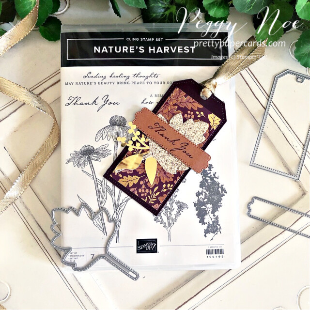 Blackberry Beauty Fall Tag Stampin' Up! Pretty Paper Cards #blackberrybeautydsp #tailormadetags #tags #thankyoutags #stitchedleavesdies #expressionsininkephemerapack #prettypillowboxdies #nature'sharvest #nature'sharveststamset #goldfoilleaves