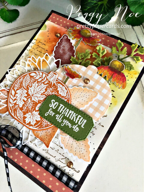 Handmade Fall Card made with the Pretty Pumpkins Bundle by Stampin' Up! created by Peggy Noe of Pretty Paper Cards #prettypumpkin #prettypumpkinbundle #prettypumpkinstampset #stampinup #stampingup #peggynoe #prettypapercards #fallcard #pumpkincard #pumpkins